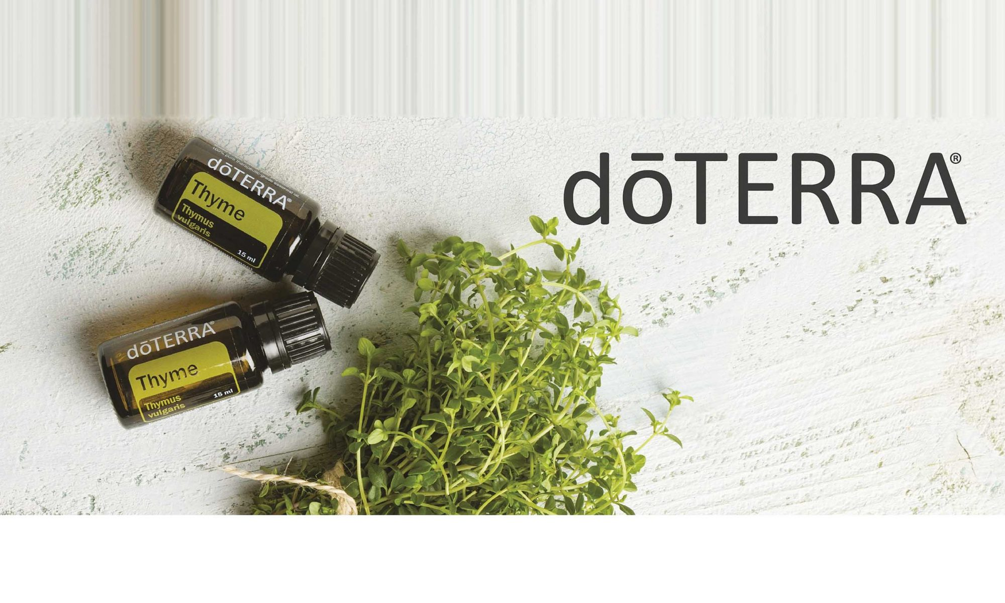 doTERRA Thymian - Thyme | Thymus vulagaris - bei Cornelia Danninger | Langenlois